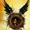 Story Details Revealed For Harry Potter and The Cursed Child