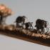 Elephant-Walk-by-Cindy-Chinn-02.jpg