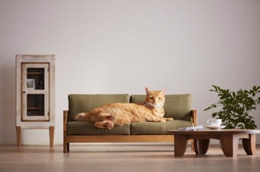 cat-furniture-neko-kagu-2.jpg