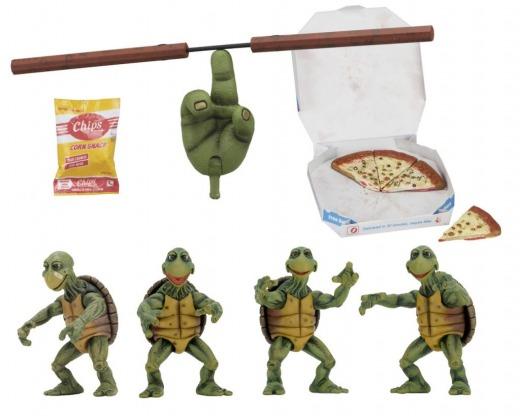 54064-Baby-Turtles-1300-1024x819.jpg