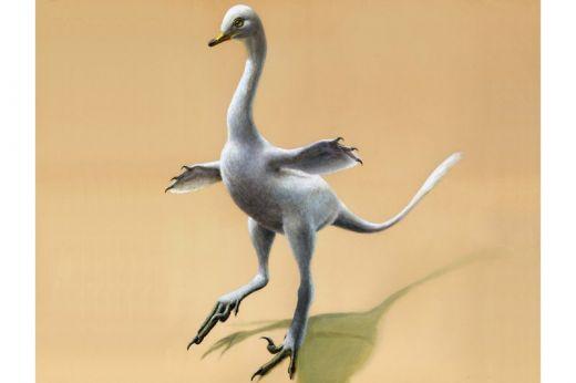 duckosaur.jpeg