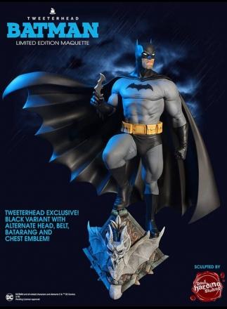 Tweeterhead-Batman-and-Robin-Statues-002.jpg