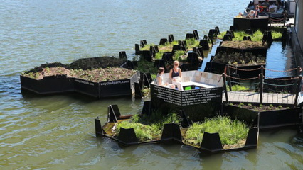 What's Hot: Rotterdam's Floating Trash Garden