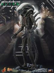 1 UPDATED_Alien_Big Chap.jpg