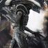 7 UPDATED_Alien_Big Chap.jpg