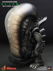 Alien_BigChapVinyl_01.jpg