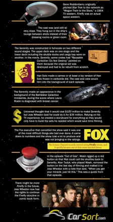 firefly-facts-3.jpg
