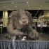 star_wars_celebration_6_104.JPG