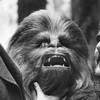 'Chewie' - The Story of Star Wars' Peter Mayhew To Be Made by By 'Fanboys' Director