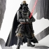 Star-Wars-Movie-Realization-Samurai-Darth-Vader-003.jpg