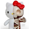 SHOCKER - Sanrio Admits HELLO KITTY is NOT A CAT!!!