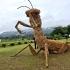 dinosaur-straw-sculptures-wara-art-festival-2015-niigata-japan-669.jpg