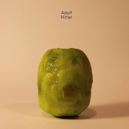 I-revealed-the-secret-identity-of-scheming-Kiwi-Fruits3__880.jpg