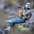 darryll-jones-makes-star-wars-stormtroopers-installations-6.jpg