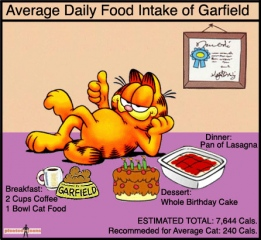 garfield-daily-intake.jpg