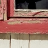window-realistic-painting.jpg