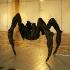 29_spider1.jpg