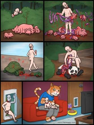 if_humans_were_cats.jpg