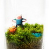 Insanely Awesome Geek-Themed Terrariums From Jacie Anderson-Coovert