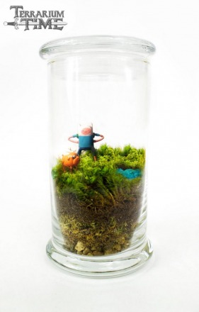 Moss Love - Terrarium Time - Finn and Jake.jpg