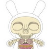 Jason Freeny X Kidrobot X Bigshot Toyworks - Visible Anatomical Dunny