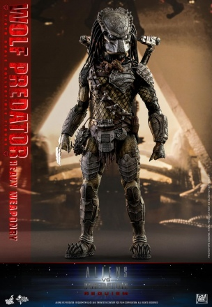 Hot Toys - AVP2 - Wolf Predator Heavy Weaponry collectible figure_PR12.jpg