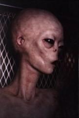 real alien.jpg