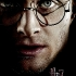 Potter1.jpg