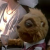 Air New Zealand Makes Muppets More Interesting With Sexual Innuendos