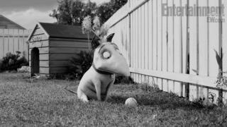 frankenweenie-animated-movie-image-02-600x337.jpg