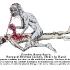 Zombie Kama Sutra- Forward Reverse Jockey.jpg