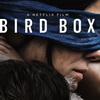 Sandra Bullock, John Malkovich Can't See The 'Bird Box' Trailer