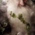 hobbit-poster-balin-404x600.jpg
