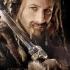 hobbit-poster-fili-406x600.jpg