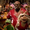 "Cee Lo Green ""All I Need Is Love (ft. The Muppets)"" (Official Music Video)"