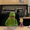 Kermit the Frog confesses all!