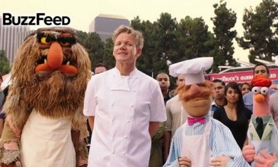 muppets and gordon ramsay_feat.jpg