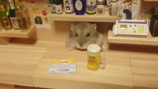 hamster-bartender-1.jpg