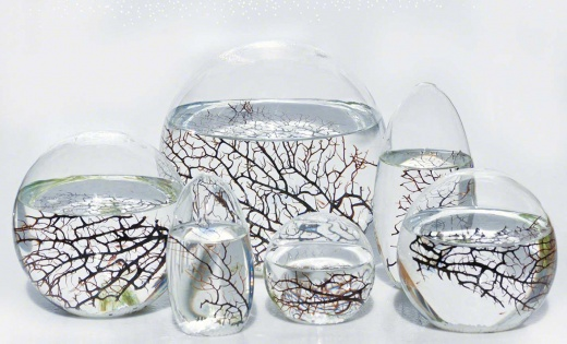 ecosphere-home-page-group-ww.jpg