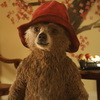 'Paddington 3′ is Happening, But With A New Director