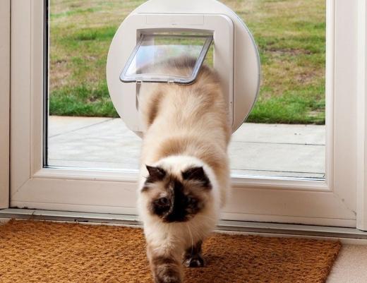 SureFlap-Automatic-Microchip-Pet-Door-05.jpg