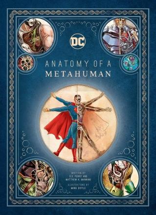 metahuman anatomy.jpg