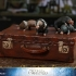 Hot Toys - Fantastic Beasts 2 - Newt Scamander Collectible Figure_PR19.jpg