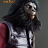 14_pota_gorilla_soldier.jpg