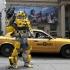 Brooklyn-Bumblebee3-550x417.jpg
