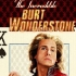 incredible-burt-wonderstone-poster-steve-carell_feat.jpg