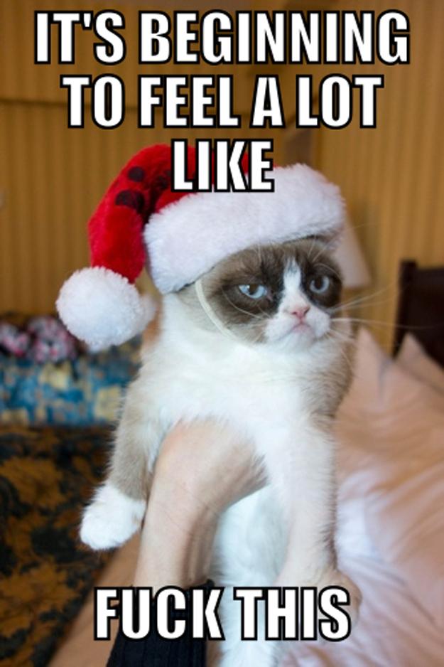 grumpy_cat_christmas_2.jpg