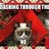 grumpy_cat_christmas_1.jpg