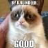 grumpy_cat_christmas_7.jpg