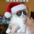 grumpy_cat_christmas_9.jpg